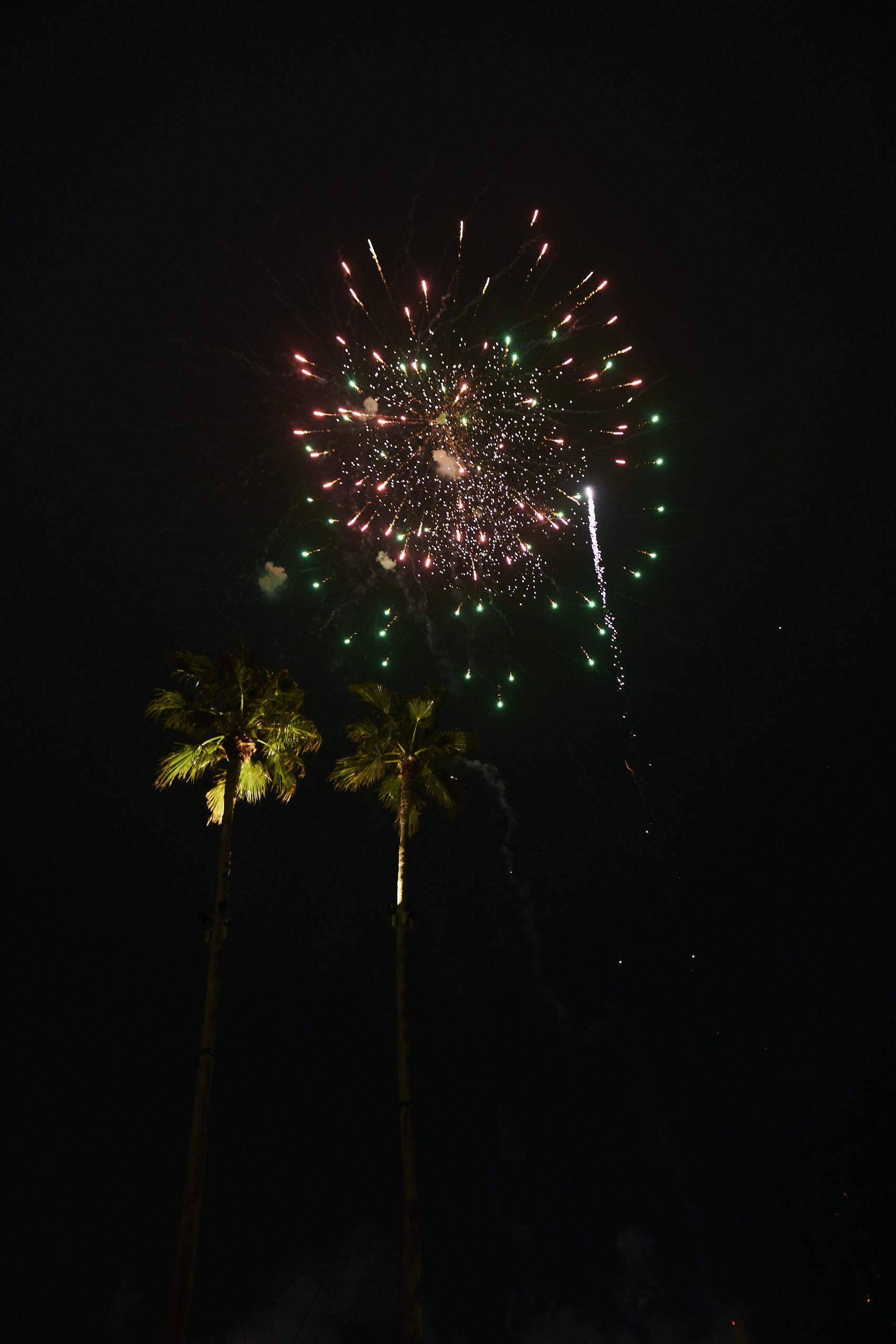 徳島市の結婚式場ブランアンジュで人気の演出打ち上げ花火